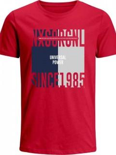Camiseta para Niño en Tejido de Punto 96% Algodón 4% Elastano Manga Corta  Nexxos 45207
