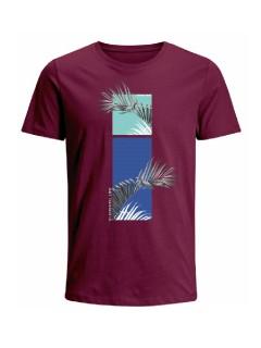 Camiseta para hombre en Tejido De Punto 100% Algodón Peinado Abierto Maga Corta marca Nexxos 39825-047